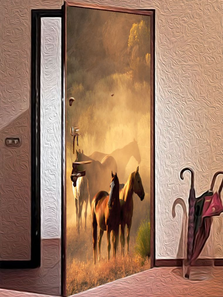 Идеи отделки дверей - как создать современный дизайн для межкомнатных и наружных дверей (100 фото)